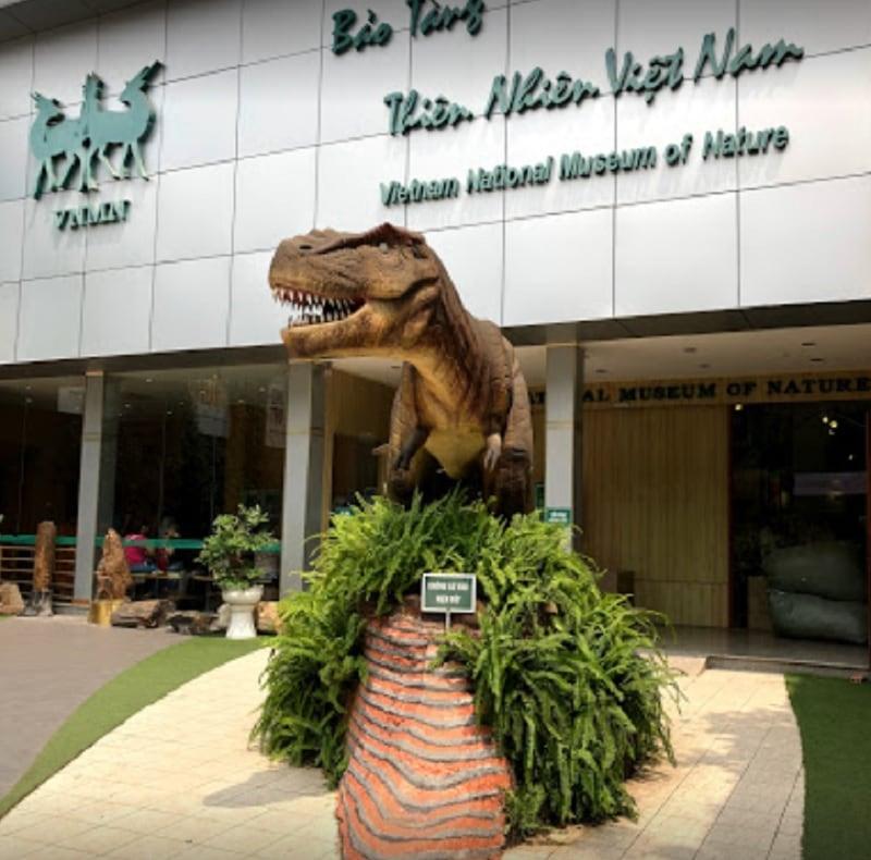Cầu Giấy có gì chơi? Khu vui chơi ở Cầu Giấy. Bảo tàng thiên nhiên Việt Nam