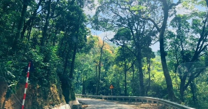 Review địa điểm đi chơi cuối tuần Hà Nội. Chỗ đi chơi cuối tuần ở Hà Nội. Vườn Quốc gia Ba Vì