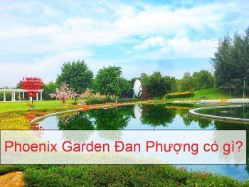 Kinh nghiệm đi Phoenix Garden Đan Phượng. Khu sinh thái Đan Phượng có gì hấp dẫn?