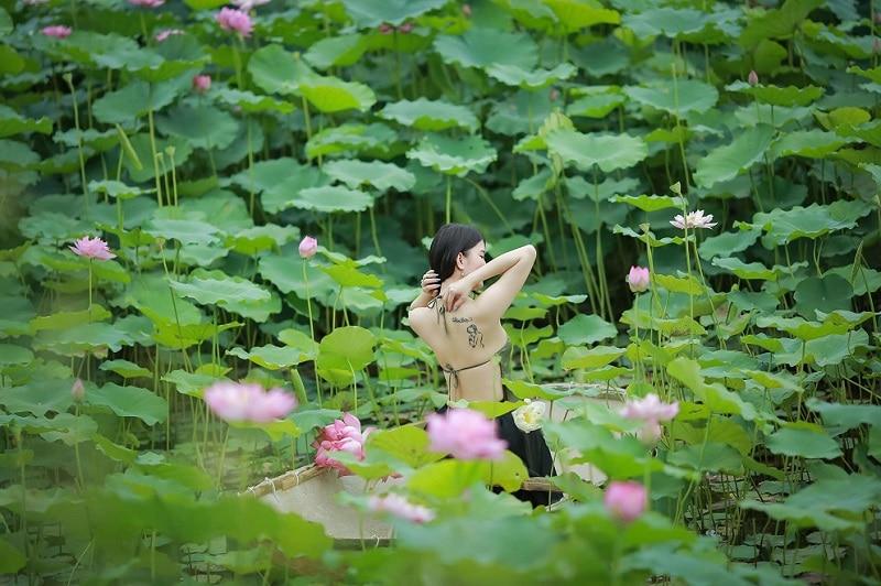 Kinh nghiệm đi bãi đá sông Hồng, chụp ảnh hoa sen ở bãi đá sông Hồng