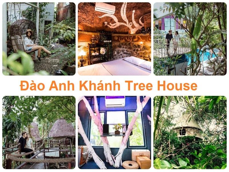 Homestay ngoại thành Hà Nội cho 2 người, Đào Anh Khánh Tree House