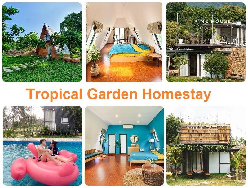 Homestay ngoại thành Hà Nội có bể bơi, Tropical Garden Homestay