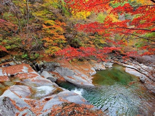 Địa điểm chụp ảnh cưới ở Hàn Quốc. Địa điểm chụp ảnh cưới ở Hàn Quốc độc đáo nhất. Công viên quốc gia Seoraksan