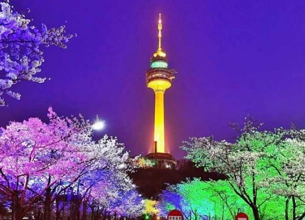 Địa điểm chụp ảnh cưới đẹp ở Hàn Quốc. Tháp Namsan. Địa điểm chụp ảnh cưới ở Hàn Quốc