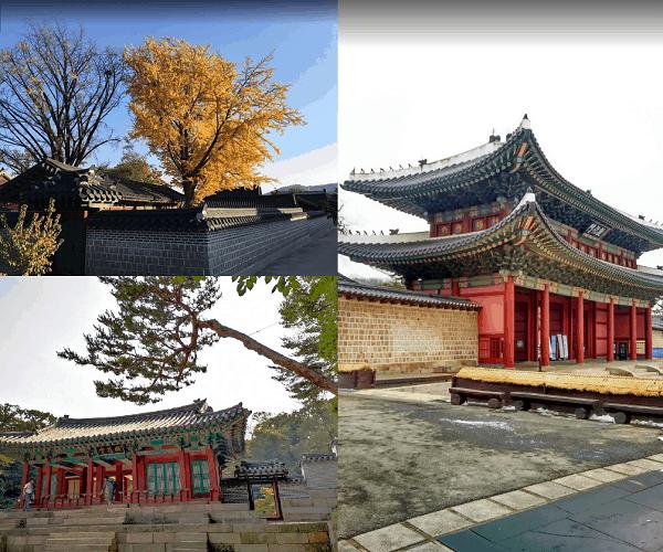 Du lịch Hàn Quốc nên đi đâu chơi, tham quan? Địa điểm du lịch Hàn Quốc. Cung điện Changdeokgung