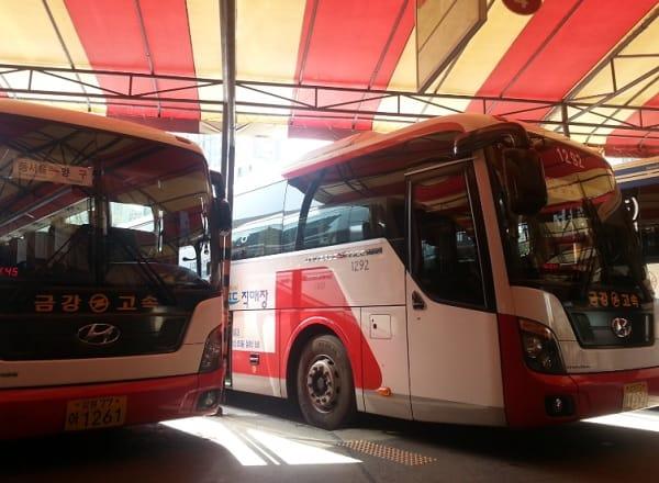 Hướng dẫn cách đi từ Busan đến Gangwon. Cách di chuyển từ Busan đến Gangwon tiết kiệm nhất