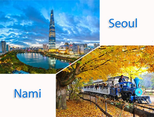 Hướng dẫn di chuyển từ Seoul đến đảo Nami