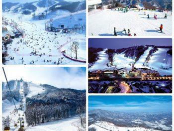 Trượt tuyết ở đâu Hàn Quốc? Top 5 địa chỉ trượt tuyết ở Hàn Quốc nổi tiếng nhất