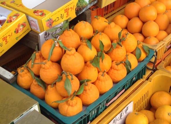 Du lịch Jeju Hàn Quốc nên ăn gì ngon? Quýt Jeju. Top món ăn ngon ở Jeju