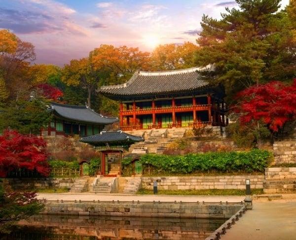Du lịch Seoul - Nami 3 ngày 2 đêm. Đến Seoul nên đi đâu chơi?