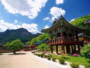 Kinh nghiệm du lịch Gangwon-do Hàn Quốc: Vườn quốc gia Seoraksan