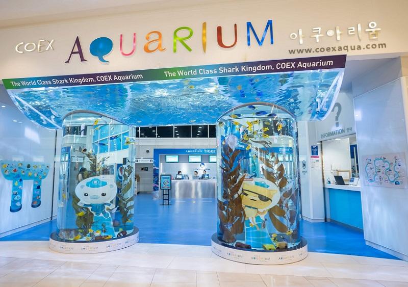Địa điểm vui chơi ở Seoul dành cho trẻ nhỏ, thủy cung Aquarium COEX