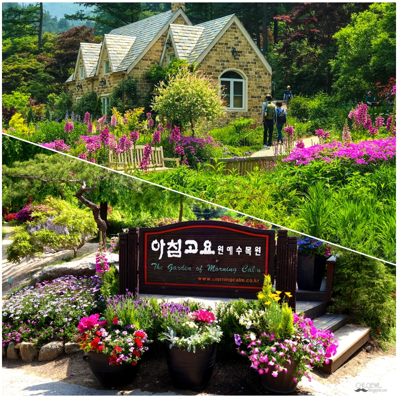 Du lịch Hàn Quốc tháng 7 nên đi đâu, chơi gì? Có nên du lịch Hàn Quốc tháng 7 hay không?