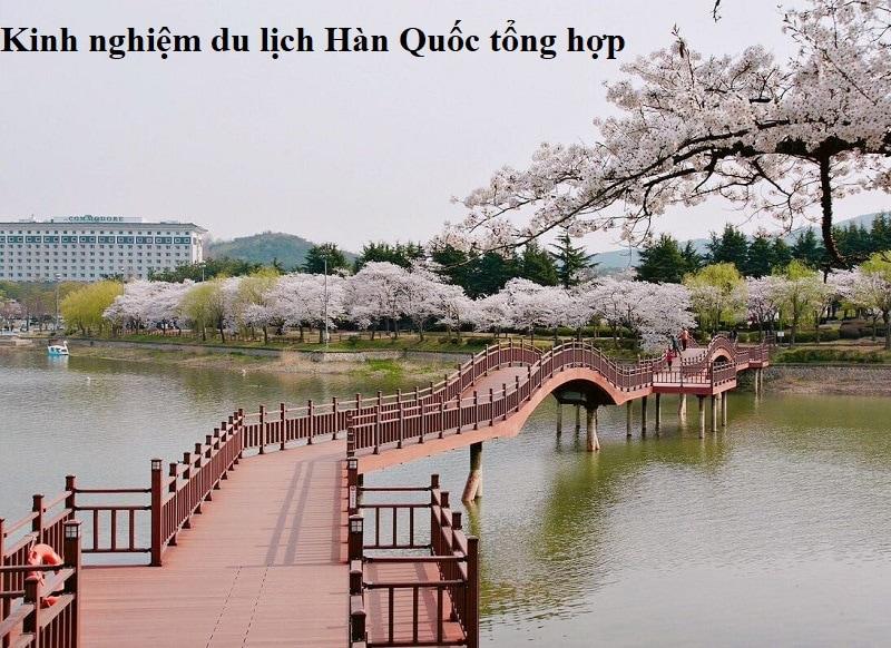 Kinh nghiệm du lịch Hàn Quốc mới nhất. Du lịch Hàn Quốc mùa xuân