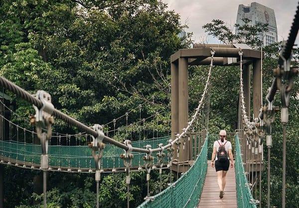 Kinh nghiệm đi tháp Menara Kuala Lumpur, khám phá Canopy Walkway