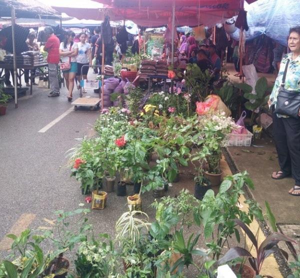 Địa điểm mua sắm ở Kuching Malaysia. Đến Kuching nên mua sắm ở đâu? Chợ cuối tuần Satok