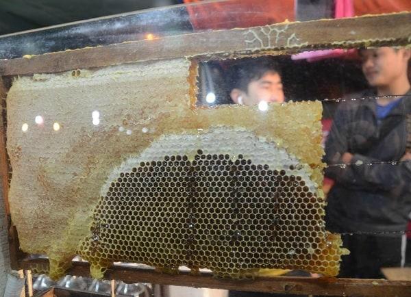 Du lịch Cameron Malaysia nên mua gì về làm quà? Mật ong rừng. Món quà ở Cameron dành cho người già