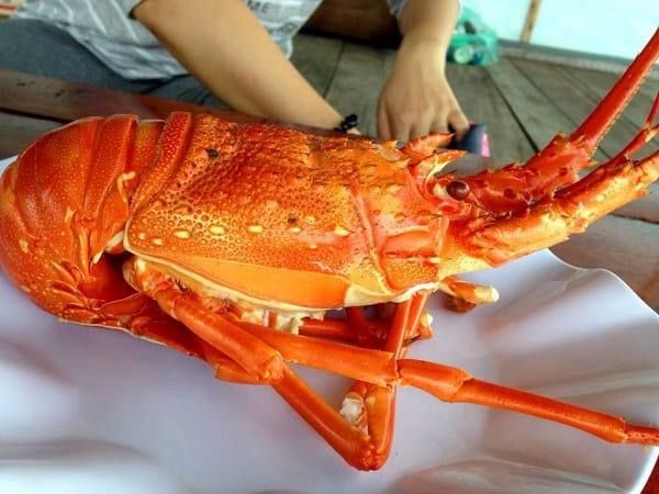 Du lịch Nha Trang nên ăn gì? Món ăn đặc sản ngon có tiếng ở Nha Trang