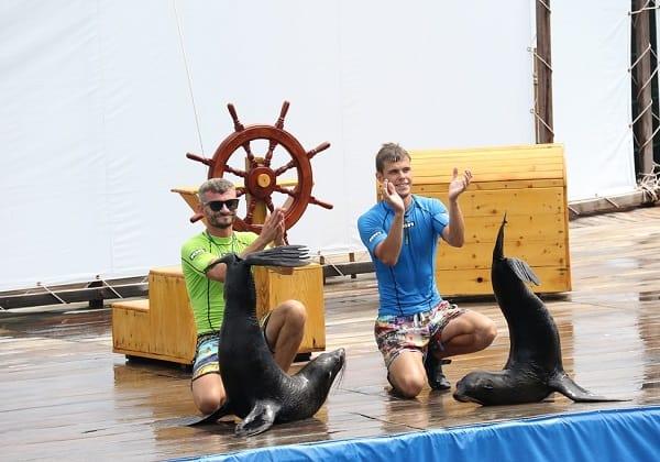 Hướng dẫn du lịch đảo khỉ Nha Trang tự túc: Du lịch đảo Khỉ chơi gì vui?
