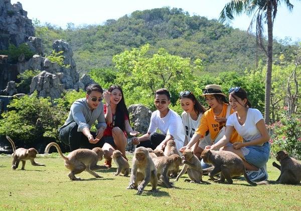 Kinh nghiệm du lịch đảo Khỉ Nha Trang: Chơi gì ở đảo khỉ Nha Trang?