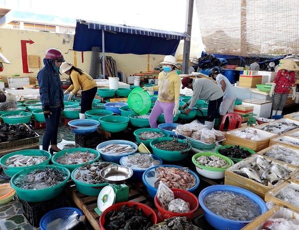Kết quả hình ảnh cho hải sản tươi sống nha trang