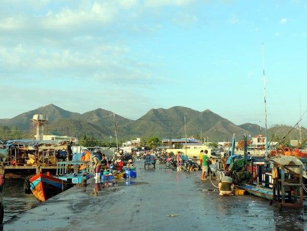Địa chỉ mua hải sản ở Nha Trang giá rẻ: Mua hải sản ở đâu Nha Trang?