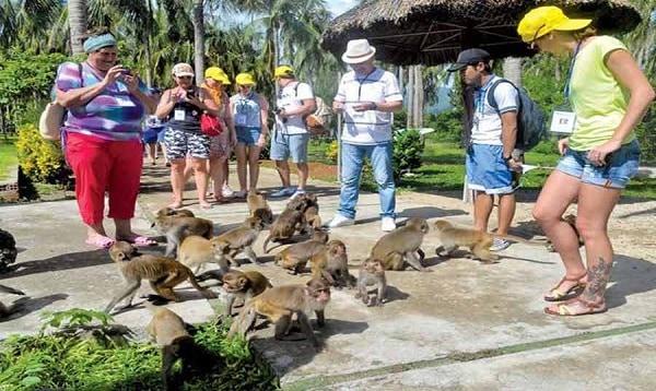 Đảo Khỉ Nha Trang/ Vui chơi giải trí ở Nha Trang
