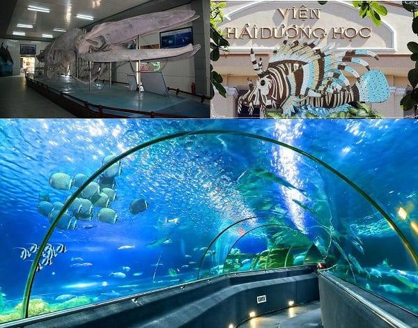 Kinh nghiệm du lịch Nha Trang giá rẻ: Du lịch Nha Trang nên đi đâu chơi?