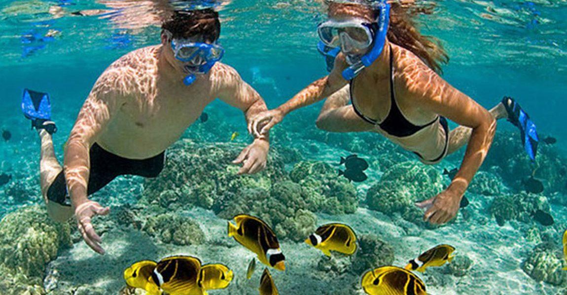 Kinh nghiệm lặn biển ở Nha Trang kèm địa chỉ đẹp, giá vé. Hướng dẫn lặn biển Nha Trang lưu ý, giá vé, địa điểm đẹp...