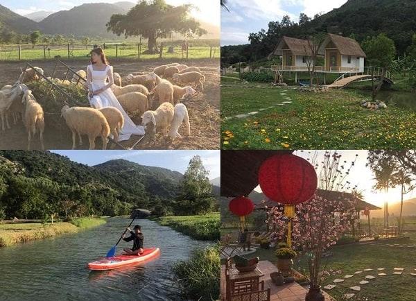 Khu du lịch đồng cừu Suối Tiên có gì chơi?