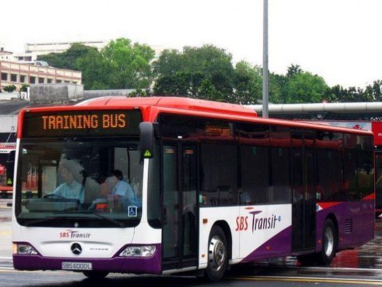 Phương tiện đi lại ở Singapore. Di chuyển ở Singapore bằng xe bus