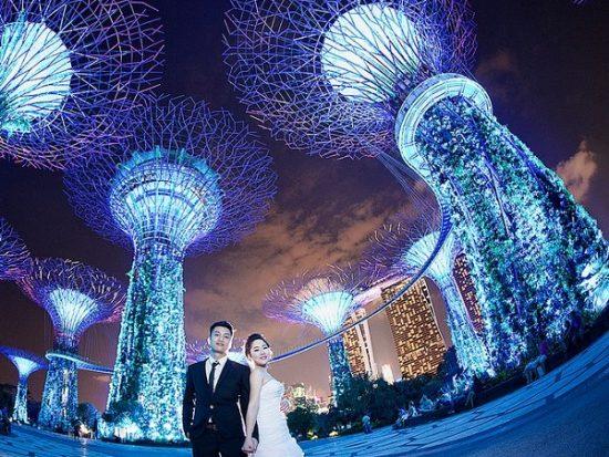Địa điểm chụp ảnh cưới ở Singapore. Garden by the Bay. Địa điểm chụp ảnh cưới đẹp ở Singapore
