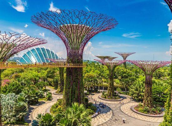 Địa điểm tham quan vịnh Marina Bay Singapore đẹp. Gardens by the Bay. Địa điểm tham quan ở vịnh Marina Bay Singapore