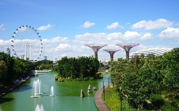 Kinh nghiệm du lịch Garden By The Bay Singapore check -in tại Dragonfly Kingfisher Lakes