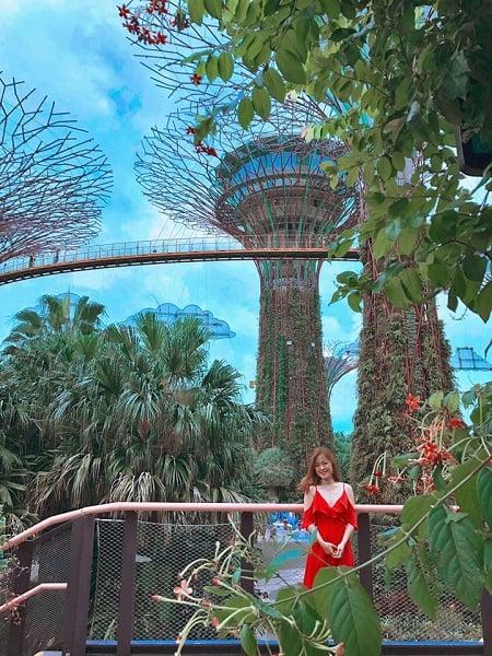 Đi đâu chơi gì ở Singapore/ Địa điểm tham quan đẹp và nổi tiếng ở Singapore