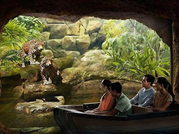 Review và so sánh Singapore Zoo và River Safari Singapore - Giá vé