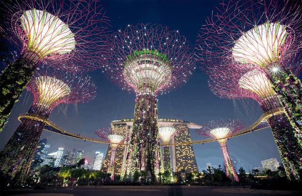 Địa điểm xem bắn pháo hoa ở Singapore, OCBC Skyway ở Gardens by the Bay