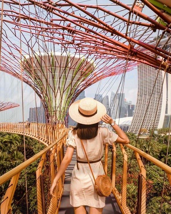 Địa điểm chụp ảnh đẹp ở Singapore, Supertree Grove ở Garden By The Bay
