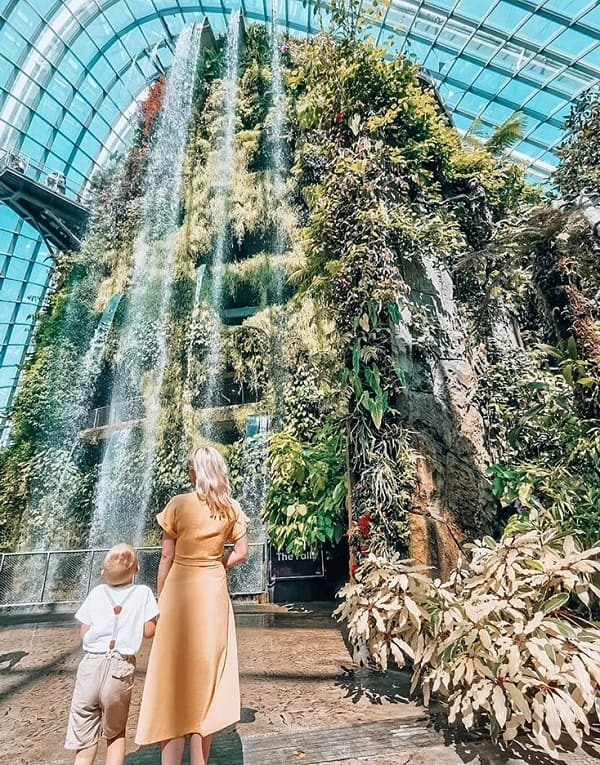 Địa điểm chụp ảnh đẹp ở Singapore, khu rừng mây ở Garden By The Bay