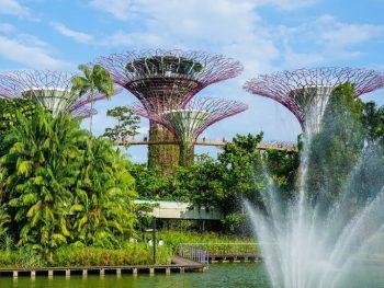 Địa điểm tham quan ở Singapore. Có nên du lịch Singapore tháng 7 không?