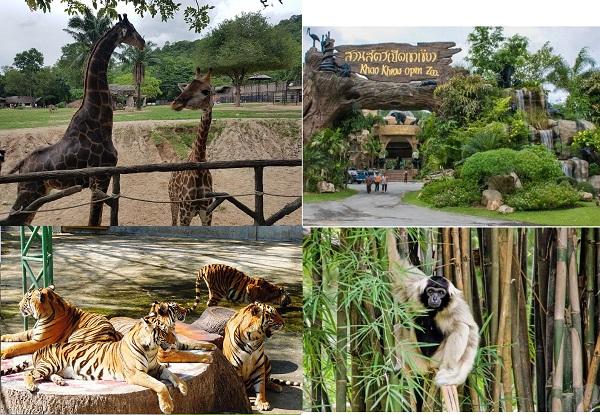 Địa điểm du lịch Pattaya đẹp nhất: Nên đi đâu chơi ở Pattaya