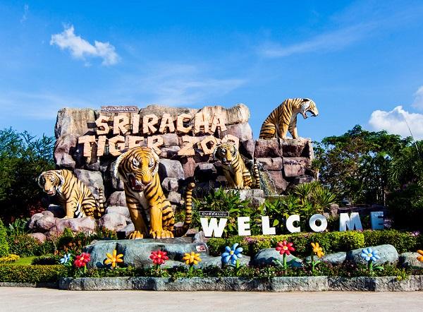 Địa điểm du lịch Pattaya nổi tiếng: Khu vui chơi, giải trí hấp dẫn cho trẻ em ở Pattaya