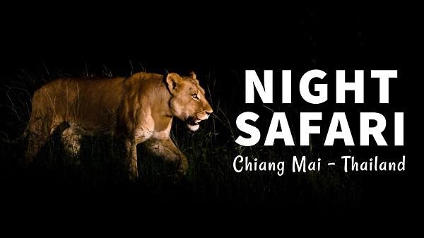Kinh nghiệm du lịch Chiang Mai, nhất định phải tham quan vườn quốc gia Chiang Mai