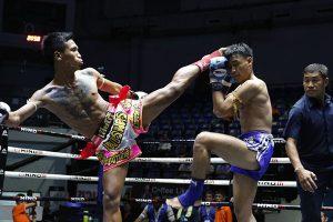 Xem Muay Thái ở Bangkok, thưởng thức những trận đấu quyết liệt