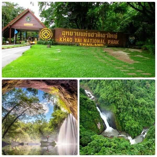 Vườn quốc gia Khao Yai - địa điểm tham quan không thể bỏ qua trong lịch trình du lịch Khao Yai 2 ngày 1 đêm