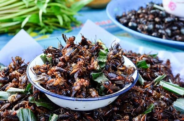 Côn trùng chiên - Món ăn vặt Bangkok thú vị nhất