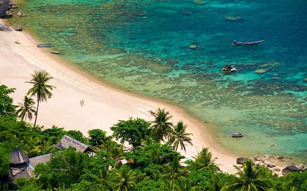 Khám phá đại dương trong chuyến du lịch đảo Koh Tao khi tham gia lặn biển ở vịnh Tanote